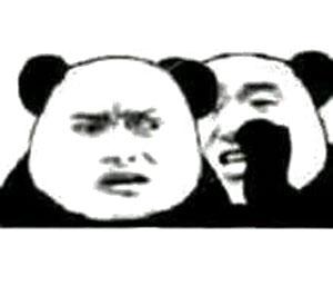 张学友熊猫头在尔泰耳边说悄悄话-表情v表情运气搞笑图图片