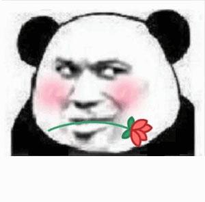 教皇熊猫头嘴上叼了一朵小红花-表情包原图-表情包模板
